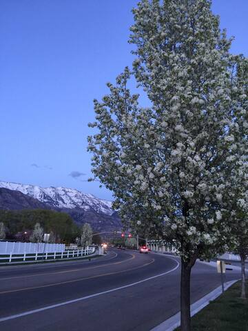 Street view, at the entrance to community.... Minutes from AF canyon, Mt. Timp, 2 parks, shopping, destination points, and freeway.