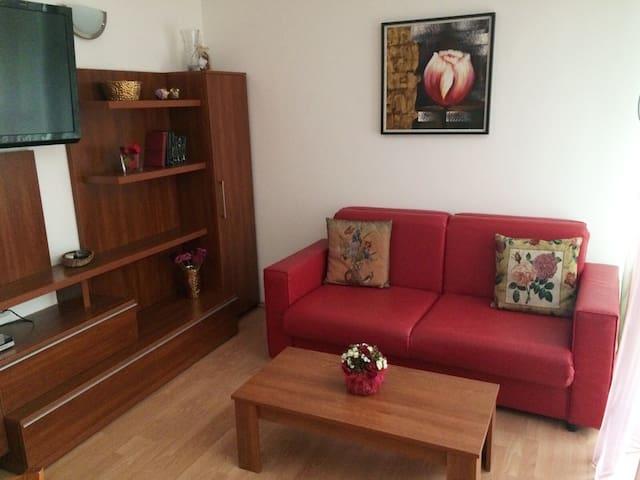 Раскладной диван для двух гостей.