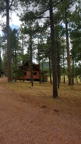 Peaceful Log Cabin with Amazing Views!
