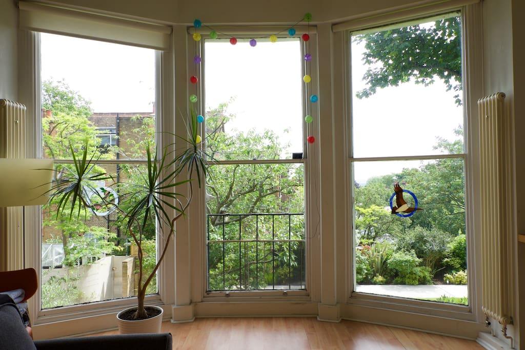 Living rooms windows, floor to ceiling