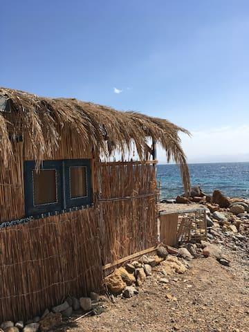 The Fischer's Hut - Nuweibaa - Hut