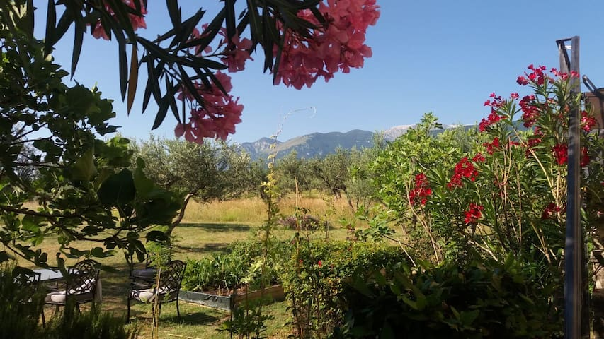 Stay in a 300 year old Abruzzo farmhouse!
