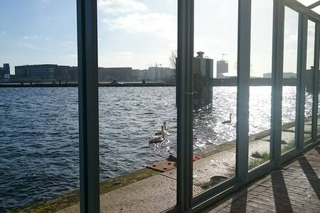 Loft with walking distance to Central Station - Amsterdam - Loft