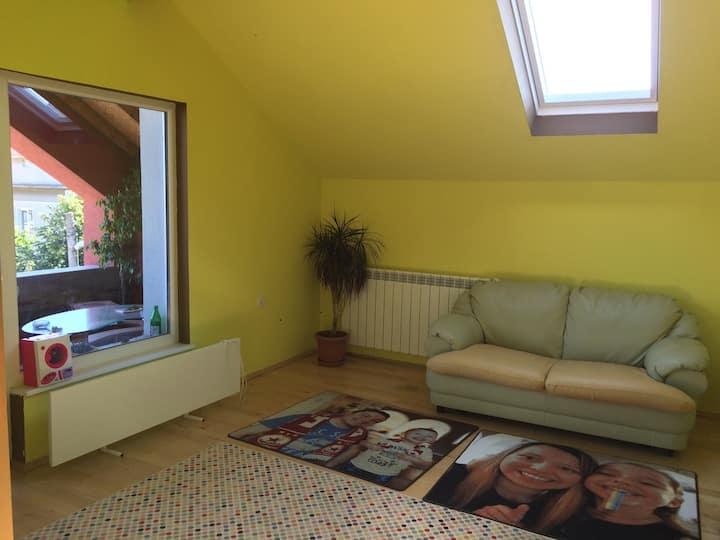 Vinitsa cosy apartment