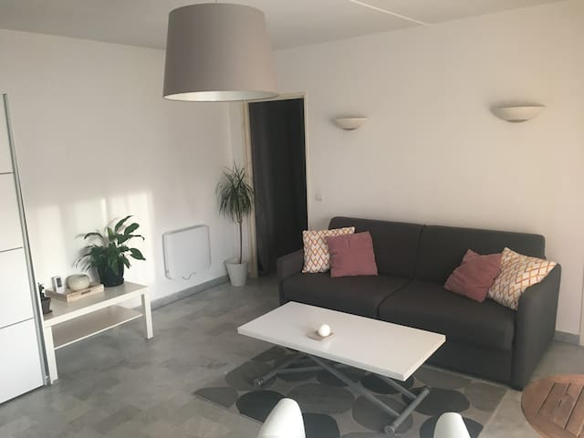 Studio meublé au centre ville de Mandelieu