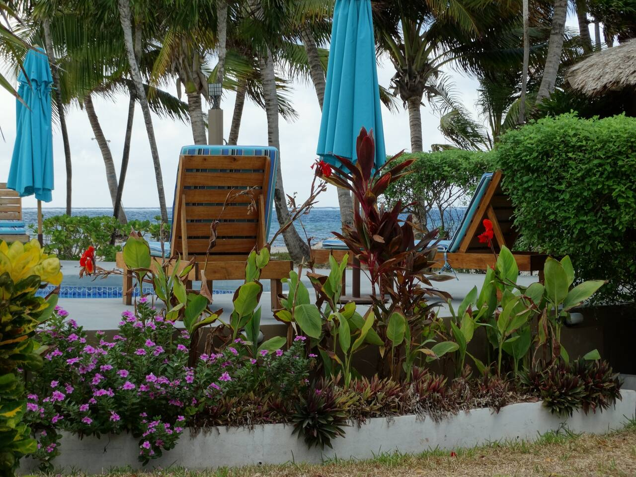 We are located in a quiet and relaxing resort, with a restaurant, dive shop, tiki bar, free WiFi, bikes, sea kayaks and daily housekeeping.