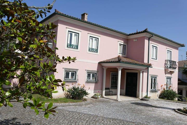 Casa da Palmeira - o seu canto no centro da cidade