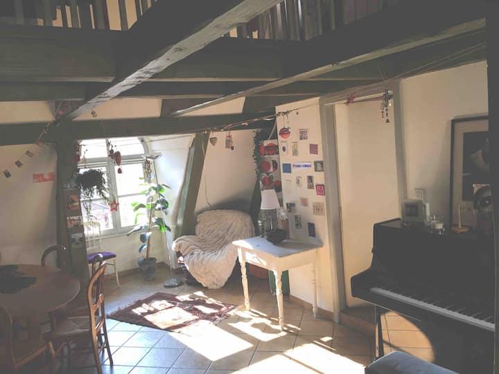 duplex chaleureux 130m2+ garage/ cœur Centre ville