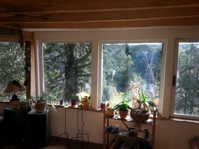 Loft en los árboles