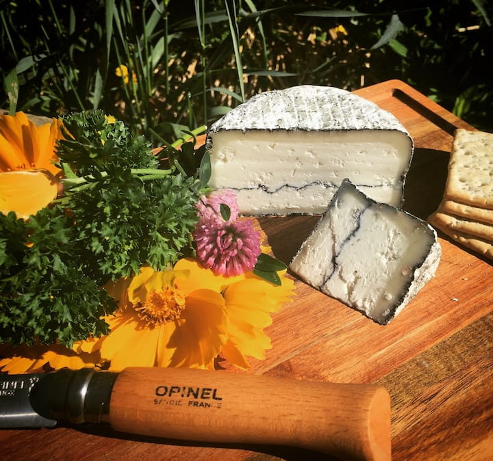Try local cheeses!