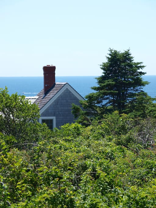 Situated off the main road, the cottage is peaceful and quiet.