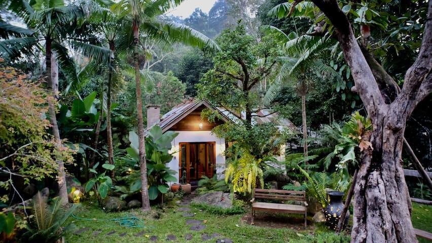 1 Bedroom Villa, Mountainous@ Doi Saket Chiang Mai