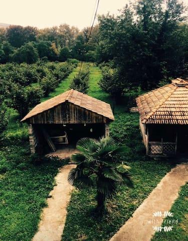 house near Dadiani residence
