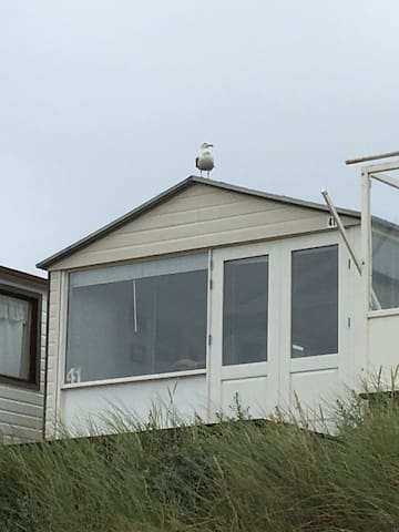 Strandhuisje IJmuiden Kleine Strand - IJmuiden
