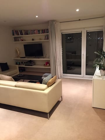 Great Room in Apartment Overlooking The Thames