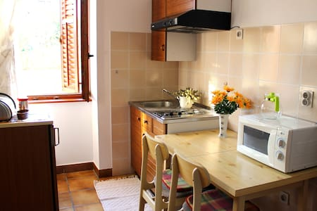 Summer Studio Apartment