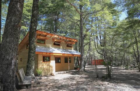 Económica cabaña, a 4 km de Parque Conguillío