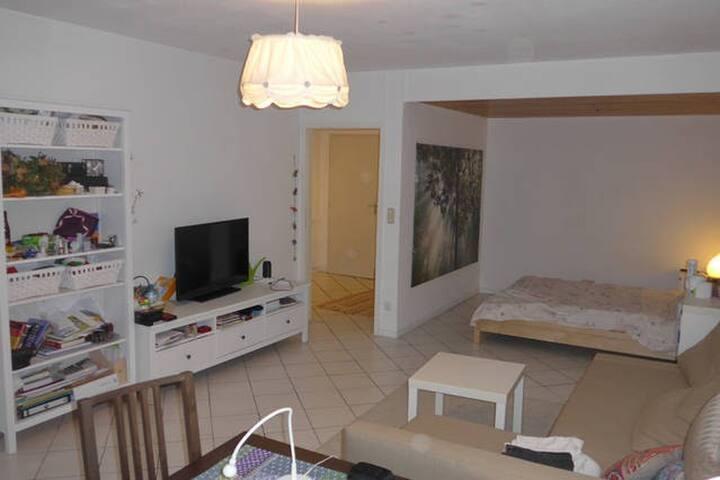Homey Flat Central Location (U5/S8) - Munich - Apartmen