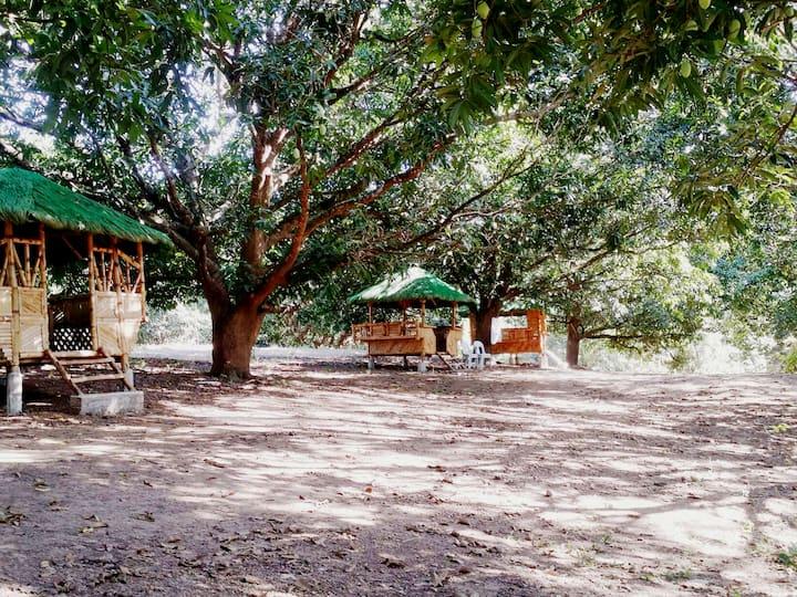 Mango Orchard Farm and Atv Park campsite.