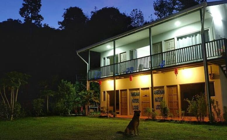 Tambunan Nature Lodge - Deluxe Room 6