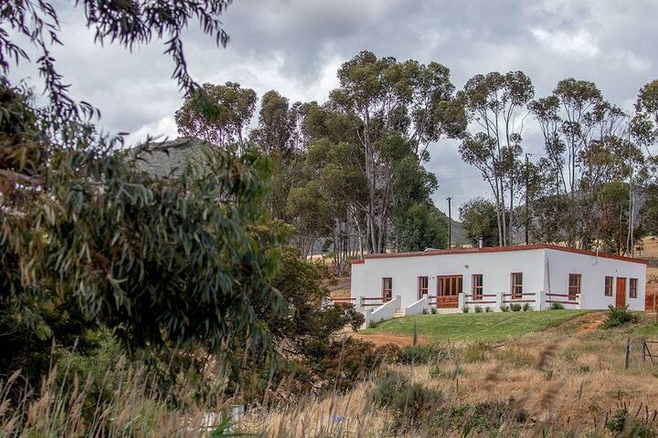 Luxurious Farm Stay