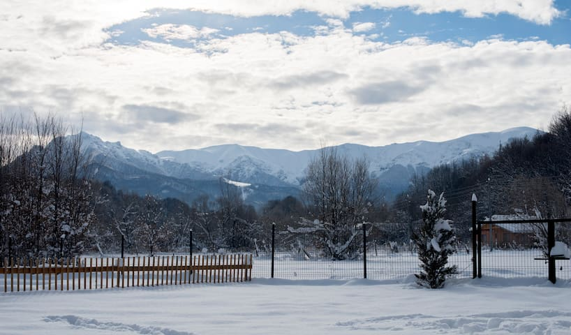 Winter magic :)