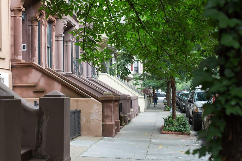 Historic District Of New York