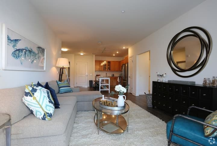 Entire apartment for you | 2BR in Port Jefferson