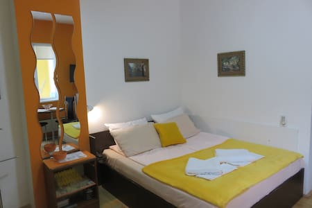 Apartmani Pavlovic Centar Studio za dvoje-dvoriste