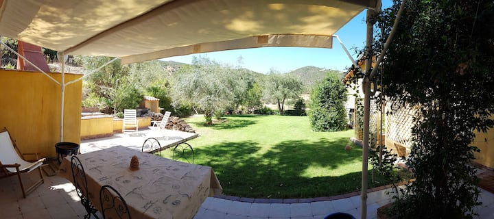 Casa per vacanze immersa tra ulivi in Ogliastra