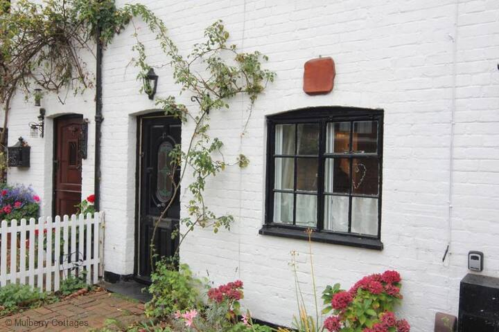 Rose Cottage, Christchurch, sleeps 4, close to centre of Christchurch. - Christchurch - Huis