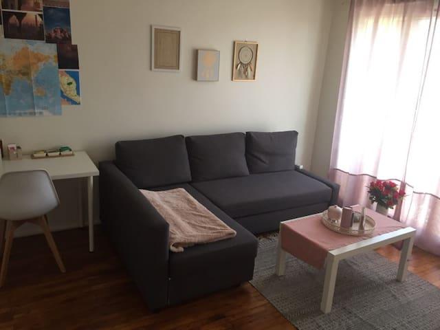 Charmant appartement à LYON