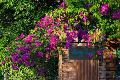 Spring Garden Homestay 4