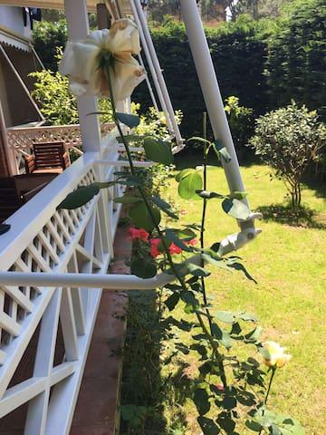 6-8 ps flat | garden | gated | beach access - Golem - Pis