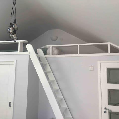 Mezzanine with single floor bed to sleep 1