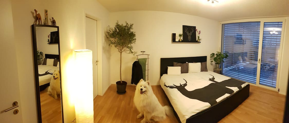 White Fluffy's Home - spacious and modern