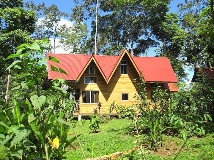 Perezoso House, Samasati Rainforest