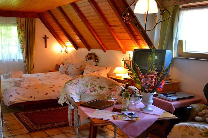 Haus Bachschwalbe, (Sasbachwalden), Ferienwohnung Rotkehlchen, 30qm, 1 Wohn-/Schlafraum, max. 2 Personen