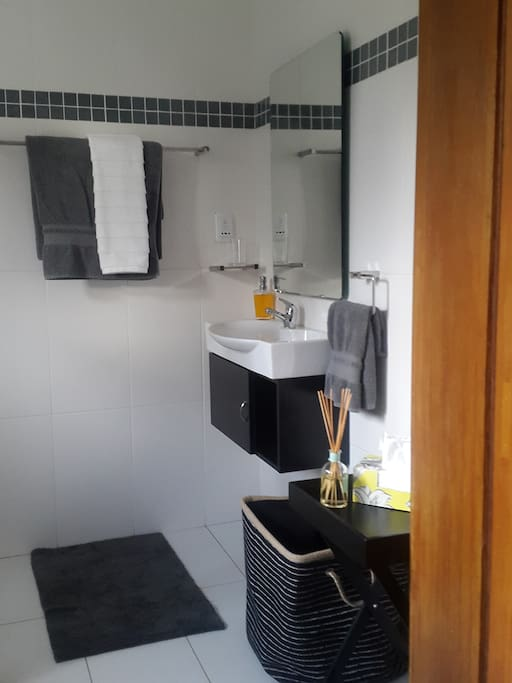 Clean and compact shower room with plug for razor and hair dryer