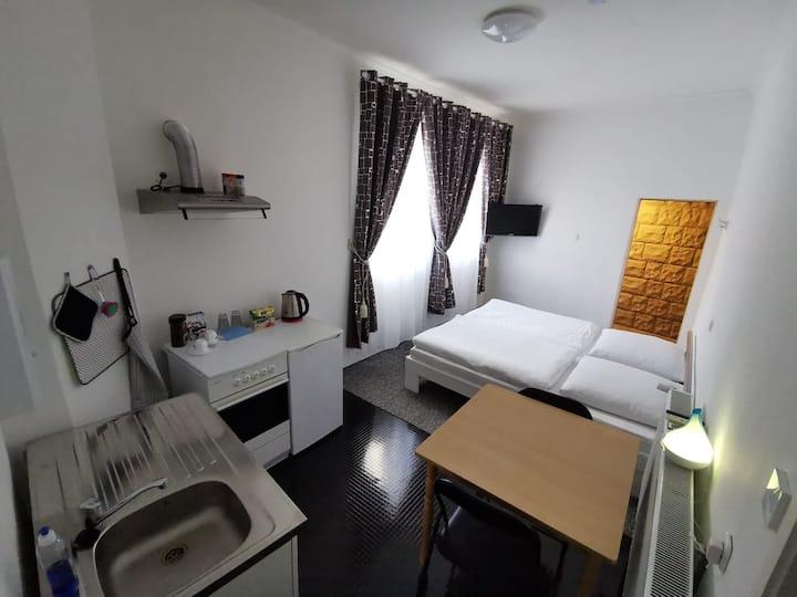 Ein Zimmer Wohnung mit Küche und Bad.