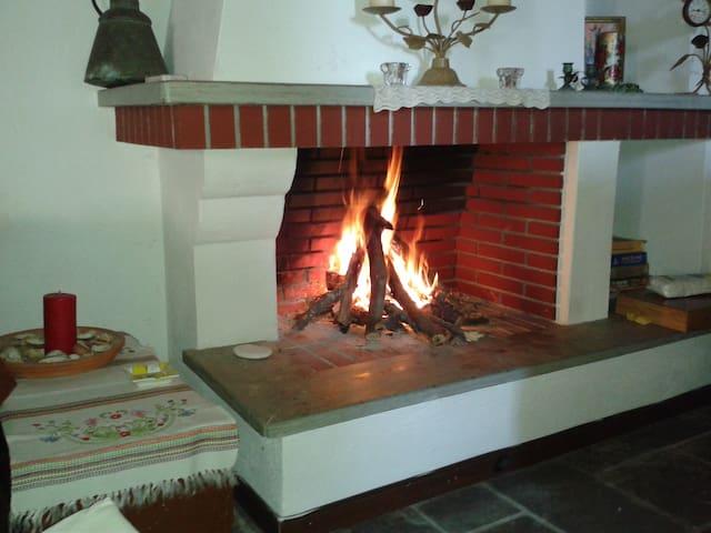 studios ΦΙΛΙΠΠΟΥ - Afetes