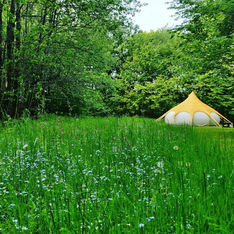Glamping in forest near Gudhjem and waterfall