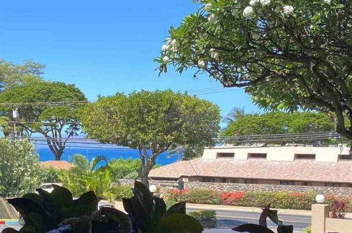 Across from Kam beach, Kihei with OCEAN VIEW! Wifi