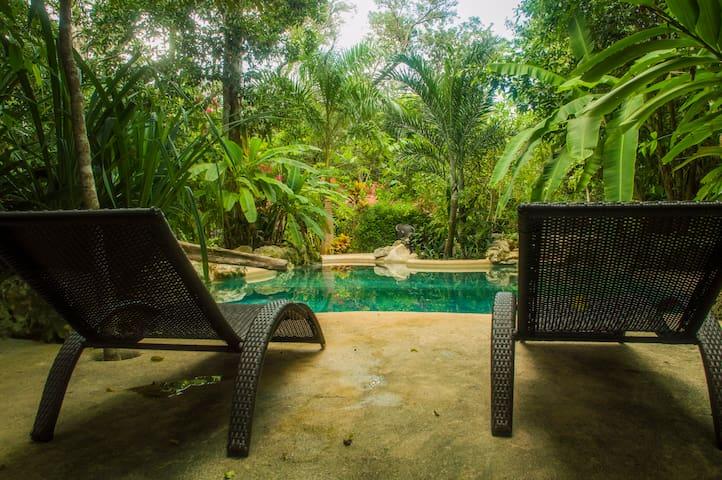 Hacienda Privada & Santuario de Mono Araña Cancun