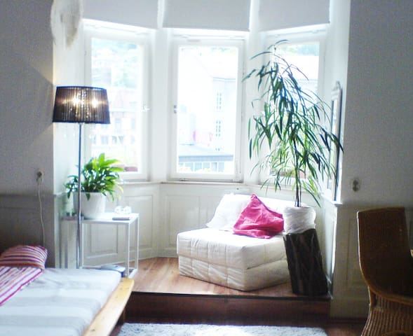 Big private Room, very bright, nice view, central - Stuttgart - Apartment