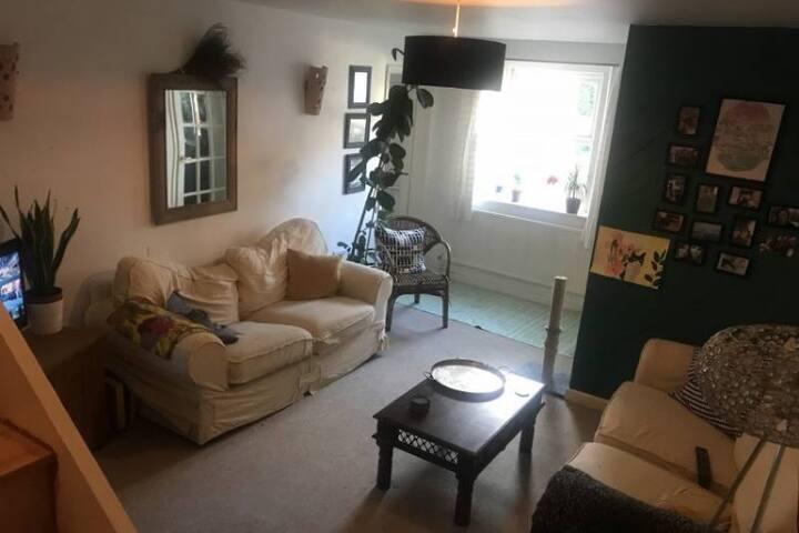 Cosey living room
