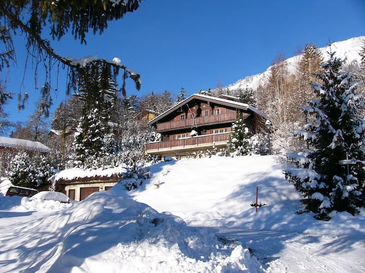 Beautiful Holiday-apartment with alpine view
