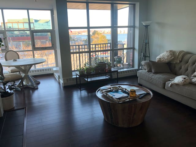 Ocean Views! Waterfront bedroom Downtown Halifax