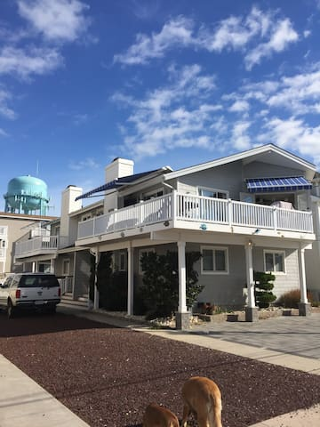 BeachHouse  families  Pet friendly - Sea Isle City - Townhouse