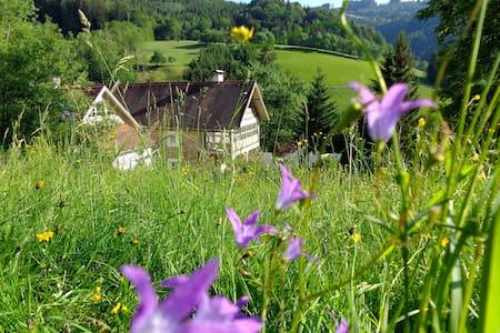 400 Jahre altes - zauberhaftes Landhaus - Unterdambach - Villa